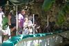 day twelve at the croco-cun zoo (dolanh) Tags: mexico zoo crococun xolodog yucatan crocodilefarm