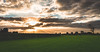 Sunset above a horse field (bramtop_1990) Tags: wide angle landscape grave nikon d610 ff nikor 20mm f18 horses pferden paarden field mais corn trees clouds sun sunset beams sunbeams
