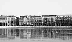 Ballindamm & Binnenalster (janmalteb) Tags: deutschland germany hamburg alster fluss river gefroren frozen eis ice häuser houses buildings gebäude weitwinkel wide angle reflektion reflection spiegelung mirrored birds vögel seagull möwe schwarz weiss schwarzweiss black white monochrom monochrome canon eos 77d tamron 18200mm