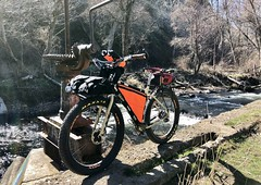 Asotin Creek - Moonriser Bar Shakedown Cruise (Doug Goodenough) Tags: bicycle bike cycle pedals spokes moonmen moonriser surly ecr 29 plus handle bar ti titanium asot creek washington 2018 18 march sun gravel grinding pto drg531 drg53118 drg53118p