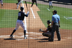 IMG_3278 (Joseph Brent) Tags: yankees spring training tampa florida steinbrenner field aaron judge