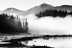 You, Me And Everything In Between (John Westrock) Tags: blackandwhite landscape nature fog lake treestumps trees mountains water contrast washingtonstate pacificnorthwest canoneos5dmarkiii canonef100400mmf4556lisusm
