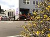 Bismarckstraße, März 2018 (-masru-) Tags: bagger excavator fahrzeuge frühling jahreszeiten kaiserslautern projects projekte seasons spring utata weekendproject utata:project=seasons