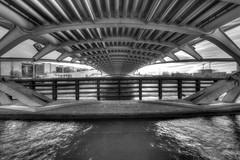 "Below Crown Prince Bridge - HDR B&W Artistic <a style=""margin-left:10px; font-size:0.8em;"" href=""http://www.flickr.com/photos/65149948@N06/40843720512/"" target=""_blank"">@flickr</a>"