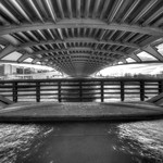 Below Crown Prince Bridge - HDR B&W Artistic thumbnail