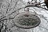 Spring? (Chris_1951) Tags: freiburg snow