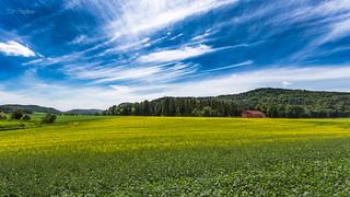 Fields of Ramnes