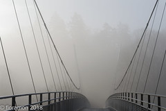 (Floramon) Tags: nebel mist fog bridge brücke