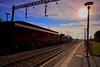 La machine 3 (Meinrad Périsset) Tags: locomotiveàvapeur steamlocomotive train classictrain switzerland suisse schweiz swizzera nikon nikond800 d800 captureone11pro