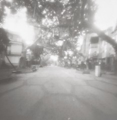 Shderot hayeled, Ramat Gan (Daphnesalbums) Tags: zone zero image 2000 camera plate ilford pan 50 caffenol