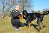 20180325 Garten_ (30).jpg (Marco Förster) Tags: hunde dobermann sina tiere natur