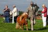 Blondemane (meniscuslens) Tags: man woman lady pony shetland chestnut grass arena bucks county show buckinghamshire aylesbury cap shetlandpony chestnutshetlandpony