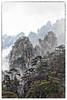 HuangShan - Mountain of Mountains (Ben-ah) Tags: jaggedmountain mountainpeak tree pinetree cloud fog huangshan yellowmountain mountain landscape anhui china granite peak unesco unescoworldheritage chinesepainting touristattraction travelphotography