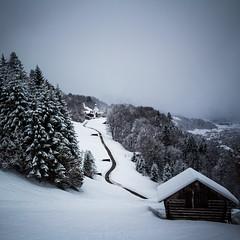 ❄️Snowstorm❄️ (Fabian Fortmann) Tags: bavaria bayern germany deutschland wamberg garmisch snowstorm snow winter schnee