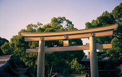 Meiji Jingu (KaeriRin) Tags: sony7m2 zeiss 55mm18 sonya7mii tokyo japan