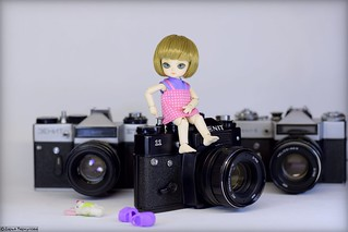 Фото Дарьи Меркуловой. Photo by Daria Merkulova. Little doll posed for me. BJD Ai - King Protea on Camera