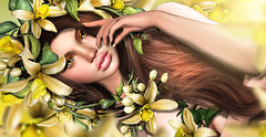 Vanilla breeze (meriluu17) Tags: vanilla flower fairy fae yellow spring sweet scent girl baby fantasy floral flora