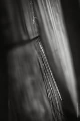 brush (imagomagia) Tags: bokeh art naturamorta macrophotography stilllifephotography artofvisual pictureoftheday stilllife monochrome noiretblancblancphotographie noiretblancphotographie xpro2 blackandwhite statue blackandwhitephotography stillife