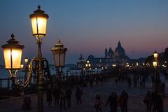 Night and Light in Venizia (morganelafond) Tags: venise venizia night light europe italy italie italia dawn yellow lampadaire sanmarco bleu blue eau sky soir santamaria