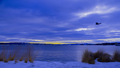 Oslo Harbor view (evakongshavn) Tags: snow sea water sky landscape ocean sunset park akerbrygge oslo norge norway blue yellow sunsets