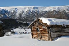 tømmerfjøs (KvikneFoto) Tags: kvikne hedmark norge vinter winter snø snow landskap tamron nikon