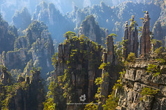 Zhangjiajie Sandstone Peak Forest Geopark (fesign) Tags: avatarmountains beautyinnature chinaeastasia cloudy colourimage day fall famousplace geography green horizontal hunanprovince internationallandmark nationalpark nature nopeople outdoors photography quartzite remote rock rockformation sandstone scenics standingstone tranquilscene tranquility travel traveldestinations tree unescoworldheritagesite yuanjiajiescenicarea zhangjiajie zhangjiajienationalforestpark