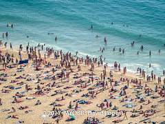 Portugal 2017-9021013-2 (myobb (David Lopes)) Tags: 2017 adobestock allrightsreserved atlanticocean europe nazare portugal aerialview beach beachumbrella copyrighted day daylight enjoyment highangleview leisureactivity ocean outdoors sand sea sunbathing tourism touristattraction traveldestination umbrella vacation watersedge ©2017davidlopes