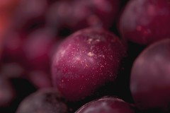 Plums  /  art (Rajavelu1) Tags: fruits colours macrophotography art creative dslr availablelight handheld closeup artdigital