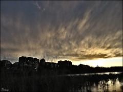 Pintando en gris (peavy30) Tags: rio ebro atardecer zaragoza cielo sky nubes clouds evening