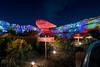 Radiator Springs Racer & Purple's Majesty (TheTimeTheSpace) Tags: disneyland disneylandresort disneycaliforniaadventure carsland radiatorsprings radiatorspringsracer night stars nikond810 nikon142428