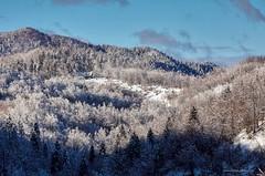 Lovačka kuća Petlićev vrh (MountMan Photo) Tags: lovačkakuća zelinmrzlovodički gorskikotar primorskogoranska croatia landscape šuma forest snijeg snow zima winter