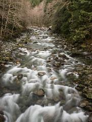 Taylor River (Scott_Nelson) Tags: northbend washington unitedstates us mtbakersnoqualmienationalforest snoqualmie cascades
