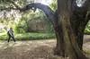 Ninfa : uno scatto nel parco con rovine -versione con una persona di raffronto (sandromars) Tags: italia lazio latina ninfa parco