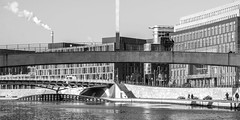 regieren am fluss (rey perezoso) Tags: 2018 berlin bw spree eu river blackandwhite buildings bridge rio mitte germany cityscape city chimney day winter hiver pont brücke rive