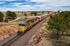 UP 8798 - Harriman, WY (Wheelnrail) Tags: up union pacific emd locomotive train trains railroad sd70ace freight wyoming western west is best wy laramie subdivision sherman hill track 3 water tower silver