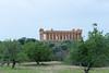 IMG_4262 (vasapolliluca) Tags: agrigento sicilia italia it sicily templi tempio temples italy rovine mandorlo mandorle fiori almond tree
