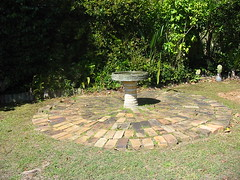 Birdbath in Our Backyard (NevDev (Nev)) Tags: birdbath housebricks bricks circle gardendesign ornamental flowers green shrub shrubs sydney newsouthwales plant plants grass garden greenery nativeplants gardens gardening spring horticulture suburbangarden backyard flora nature petal petals leaf leaves beauty beautiful