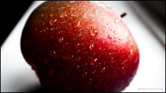 A nice juicy apple (G. Postlethwaite esq.) Tags: dof derby derbyshire fujix100t macro apple beyondbokeh bokeh closeup depthoffield drop fullframe photoborder photowalk selectivefocus water fruit
