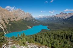Peyto Lake - Icefields Parkway, Alberta, Canada (jack.mihlenstedt) Tags: peyto lake jasper banff alberta canada canadianrockies canadian rockymountains landscape nikon nikond750 nikon1635mm hoya filter ngc travel