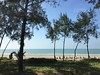 beach vista along the way to our hotel (olive witch) Tags: 2017 abeerhoque bangladesh bd beach coxsbazar dec17 december portfolio sea trees