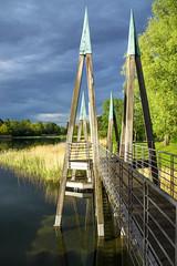 Rhizomatische Brücke (hloklm) Tags: berlin britzergarten see wasser brücke rhizomatischebrücke schilf wolken sonne bäume erholung lake water bridge reed clouds sun trees recreation