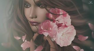 Mary~Delicate Petals....