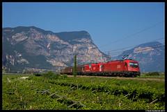 ÖBB 1216 023, Mezzocorona 01-08-2017 (Henk Zwoferink) Tags: pineta trentinoaltoadige italië it siemens taurus es64u4 190 e190 023 1216 öbb rail cargo austria rca rci henk zwoferink