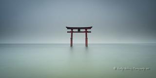 Torii, the sacred gate.
