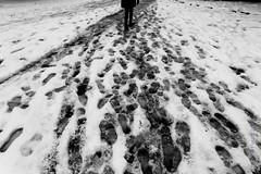 thousands steps away (explored) (simone.pelatti) Tags: bw snow steps contrast distance