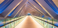 _MG_3351 - The twisting bridge in blue hour (AlexDROP) Tags: 2018 dubai uae travel bridge perspective architecture color city wideangle urban scape canon6d ef16354lis best iconic famous mustsee picturesque postcard interior bluehour hdr