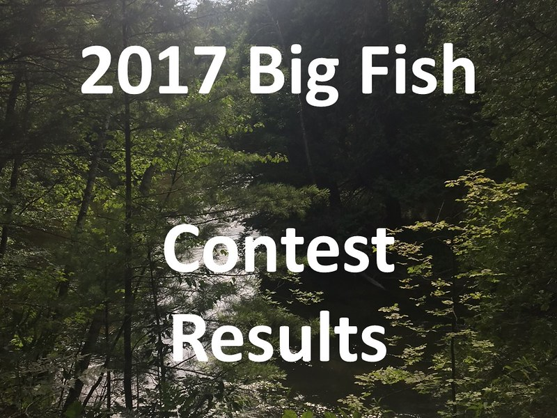 2017 MWS Big Fish Contest Results