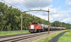 2017-08-24_6118 DBC 6510 Willemsdorp Dordreccht (Peter Boot) Tags: dbc 6510 willemsdorp dordreccht dbc6510 vlaamsereus brabantroute nederland 6400 6500 dieselloc trein ketelwagen uacns goederentrein goederenvervoer keteltrein cargo spoor spoorwegen