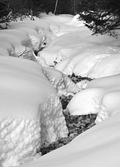 France 2018 - Le Monetier les Bains - Hautes Alpes (philippebeenne) Tags: france alpes monetierlesbains serrechevalier hiver winter snow neige nb bw noiretblanc blackandwhite paysage nature ski