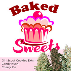 baked-sweets-mixpack-marijuana-seeds-ilgm-3_large (Watcher1999) Tags: candy kush cherry pie cannabis girl scout cookies canabis marijuana medical seeds growing weed ganja
